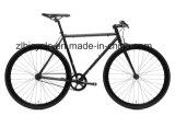 Urban Cyclist Hot Sale Single Fixie Gear Bicycles