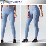 Mesh 73% Polyester 27% Spandex Dry Fit High Waist Leggings with Pocket