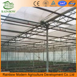 Inside Shading System of Agricultural and Commercial Greenhouse