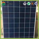 High Efficiency 265W Poly Crystalline PV Solar Panel