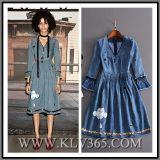 Fashion Ladies Autumn Denim Long Sleeve V-Necked Party Dress