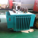 Electrical Equipment Oil Immersed Type High Voltage Step-Down Transformers