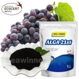 Seaweed Extract Powder/Flake Fertilizer, Extract of Sagassum Seaweed Extract, Biostimulant