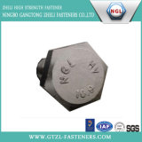 DIN6914 Structural Hex Head Bolt (grade 10.9)