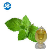 Plant Extract Pharmaceutical Oil
