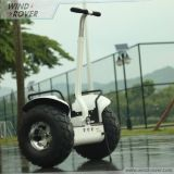 Electric Chariot Balance Scooter 36V 42A 1600W