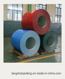 Hight Quality Prepainted Galvanized Steel Coil with Many Colors