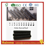 Artist Charcoal Lead for Artist Painting