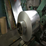 Cold Rolled or Hot Dipped Steel Coil/Strip/Galvanzied Steel Coil