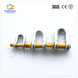 High Quality Carbon Steel Screw Pin G210 Dee Shackle