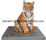 Pet Scale/Veterinary Scale/Dog Scale (VS-B150)