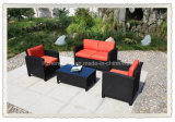 Garden Rattan Furniture / Outdoor Wicker Furniture (E-017)
