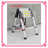 Double Sided a Type Telescopic Ladder (DLT608)