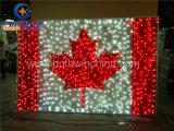 Canada National Flag for Outdoor Decoration 220V/110V LED Motif Light