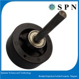 Permanent Ferrite Injection Magnet for Stepping Motor