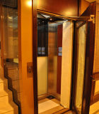 Fjzy-High Quality and Safety Home Lift Fjs-1620