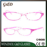 Fashion New Design PC Reading Glasses 34817