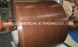 Prepainted Galvanized Steel Sheet/ PPGI Prepainted Steel Coil Continuous Galvanizing Line Factory