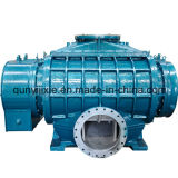 Twin-Lobe Roots Blower Used in Sulfuric Acid Plant
