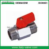 Polishing Plated Brass Male Mini Ball Valve (AV1054)