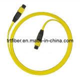 MPO-MPO 12 Fiber SM MPO Fiber Patch Cord