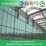 Popular Glass Greenhouse for Vegetable and Flowers Growing