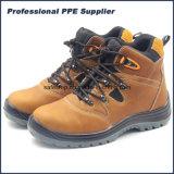 Nubulk Leather PU Injection Steel Toe Work Boots