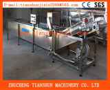High Pressure Automatic Air Bubble Cleaning Machine, Fruit&Vegetable Washing Machine Tsxq-60