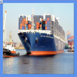 Lowest Sea Freight From to All Over The World (IC0049)
