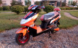 60V 1000W Green Power Electric Motorcycle on Sale