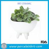 Glossy Elegant Ceramic Porcelain Planter Pot