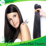 Top Quality Unprocessed Raw Brazilian Virgin Hair Human Hair Weft