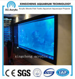 Large Clear Plexiglass Acrylic Sheet Aquarium for Restaurant Project Price