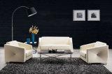 Modern Europe Design Steel Metal Leather Waiting Office Sofa (NS-S243)