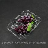 Rectangular Transparent Disposable Fruit Tray