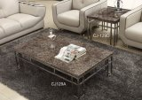 Marble Top Coffee Table Living Room Furniture (CJ-129A CJ-129D)
