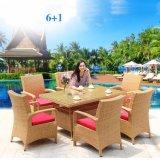 Outdoor Furniture Rattan / Wicker Restaurant Garden Furniture Outdoor Dining Table (Z559)