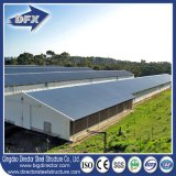 Poultry House Barns/Poultry Shed/Poultry Broiler House