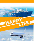 Sea Freight From Shenzhen China to Antwerp Belgium