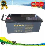 Truly 12V 260ah Heavy Duty Deep Cycle AGM Battery