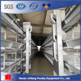 Jinfeng H Type Chicken Cage System for Poultry Farm Broiler/ Layer Battery Cage Birds Cage with Automatic Machine
