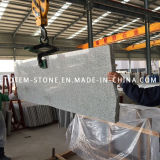 Natural G603 Granite Stone Slab for Worktop, Backsplash, Countertop, Paving