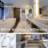 Natural Stone Arabescato White Marble for Interior Flooring/Wall Tile