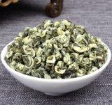 Bi Luo Chun Green Tea First Grade