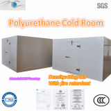 Commercial Cooling Room with Insulation Board