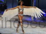 Feather Angel Wings -14