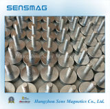 Hook Magnet, Permanent Neodymium Magnetic Assembly