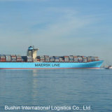 Best Ocean/Sea Shipping Freight Rates From China to Jakarta/Kuching/Kuantan/Labuan/Lat Krabang