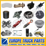 Over 700 Items Auto Parts for Renault Premium
