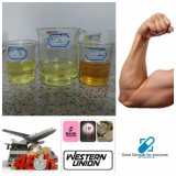 Injectable Pre-Mixed Steroids Oil Tritren 180mg/Ml for Musclegains
